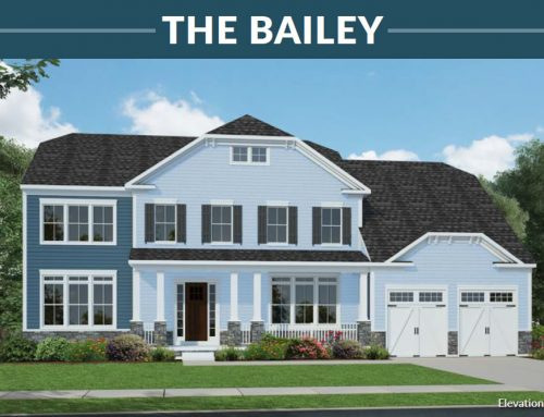 The Bailey Model